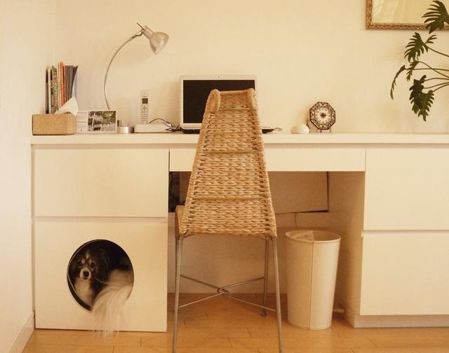 犬用スペース