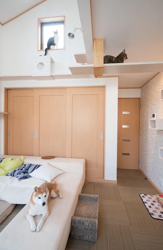 猫と犬のいる部屋