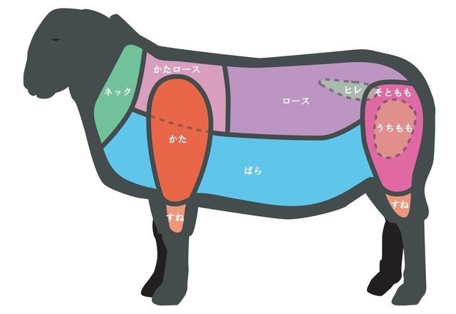 羊肉の部位