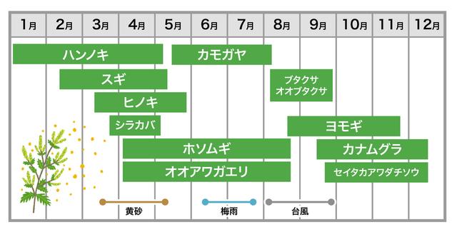 花粉症にはどんな種類があるの? 」知っておきたい花粉症の種類&飛散時期について | 東京ガス ウチコト