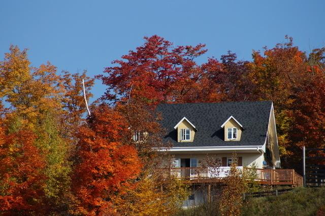 紅葉の中に建つ家