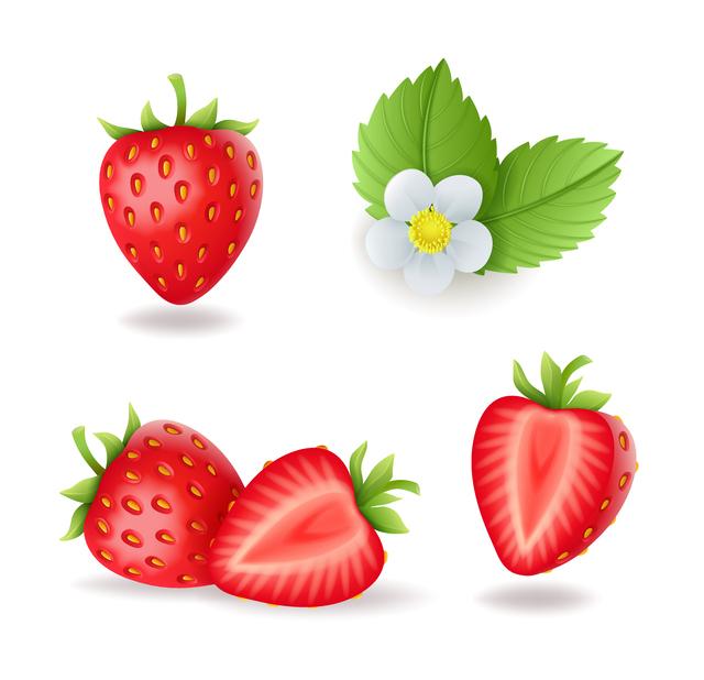 苺と苺の花