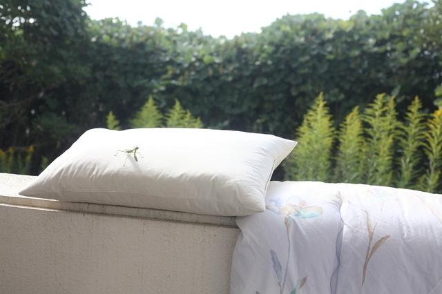 寝具を天日干しする
