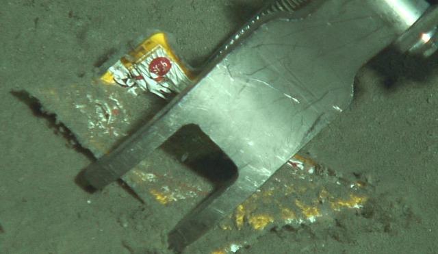 2019年9月房総半島の東沖 水深約5700mの様子