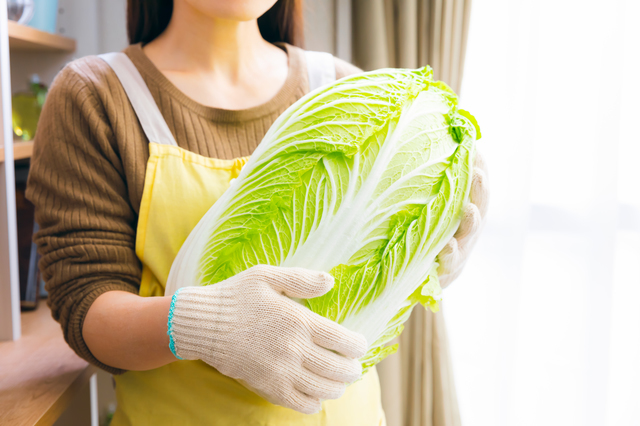 白菜を抱える人