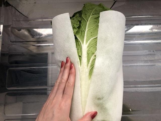 白菜をキッチンペーパーで包む