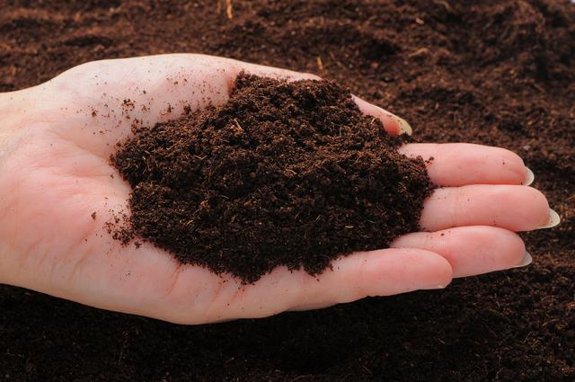 家庭菜園用の土(イメージ)