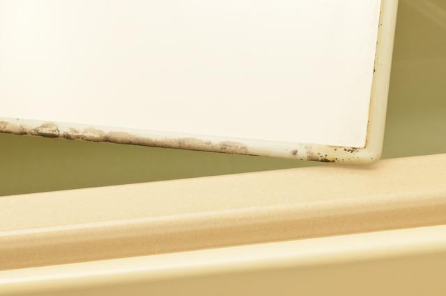 お風呂の蓋についたカビ