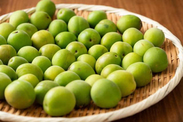 鮮やかな緑色の青梅