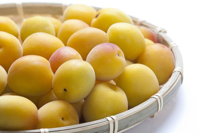 熟して黄色く色が付いた完熟梅