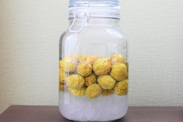 漬けて7日目になり、砂糖が徐々に溶け容器の下にたまる様子