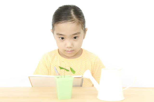 植物を観察する女の子