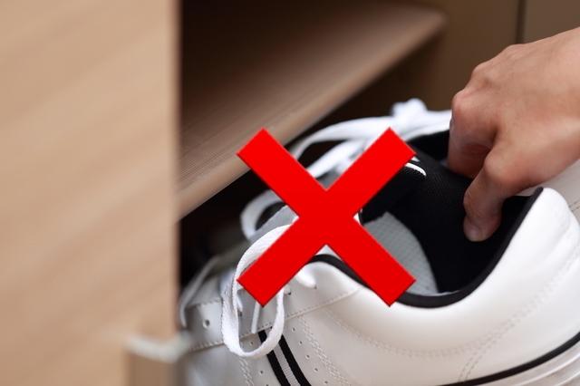 履いたばかりの靴はすぐしまわない