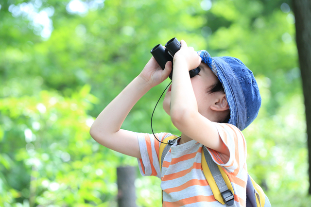 双眼鏡を覗き見る子ども