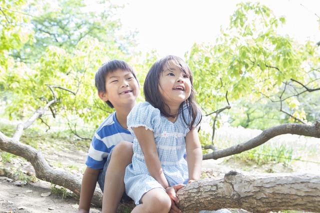 木にまたがる子ども